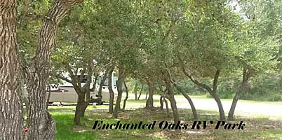 Enchanted Oaks RV Park in Rockport, TX - So Many Oak Trees!
